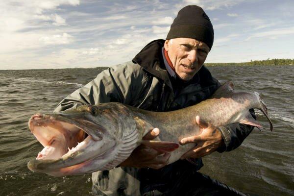 Рыбалка в Припяти