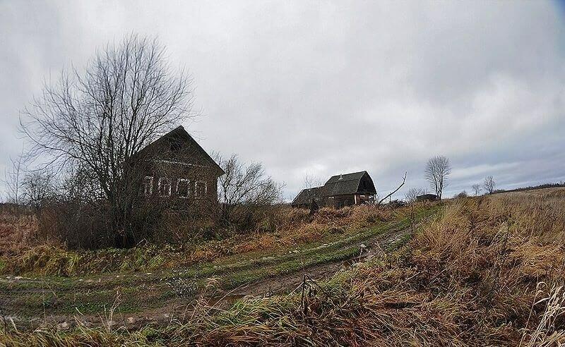 Деревня Луги фото