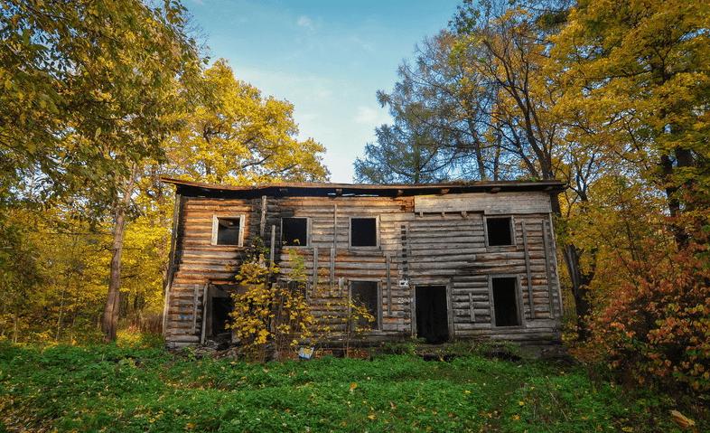 Заброшенная усадьба Левашовых-Вяземских фото