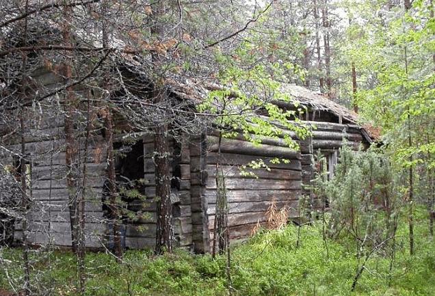 Деревня Кочкомозеро фото