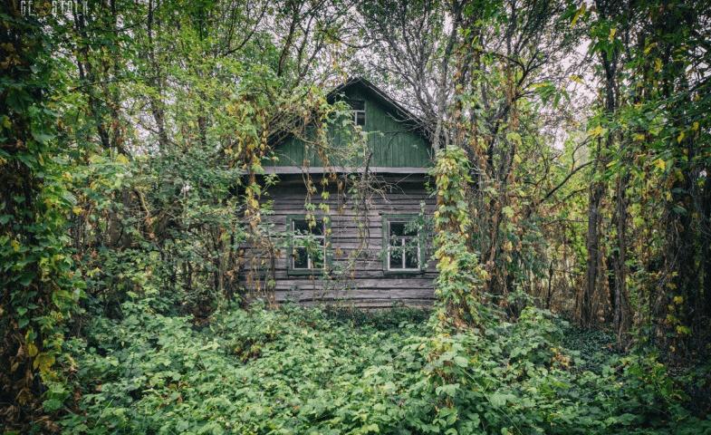 Посёлок Ушма (Свердловская область) фото