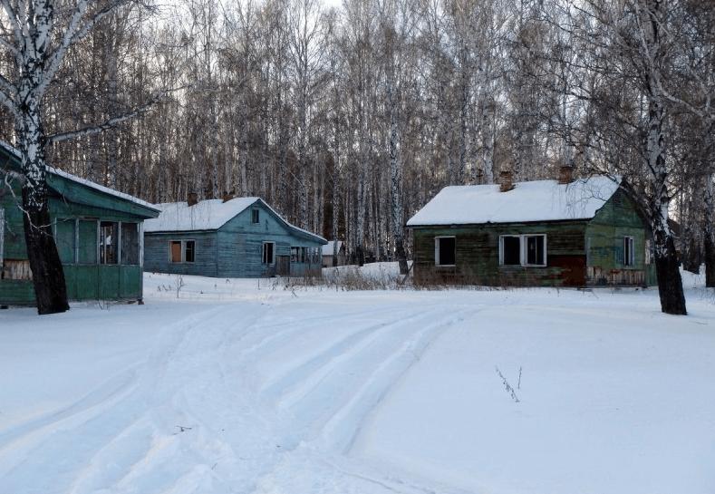 Заброшенная летняя база отдыха завода им. Калинина фото