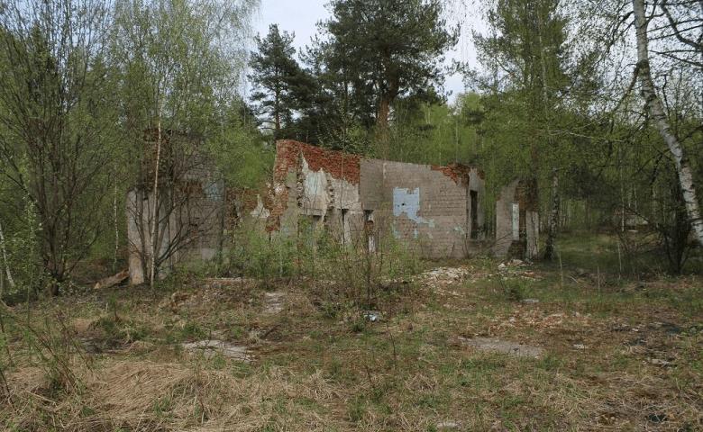 Заброшенный пионерский лагерь «Орленок» картинка